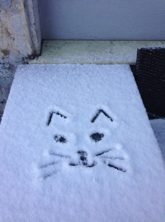 Tried drawing a kitty face into the snow, when I came out the door in the morning